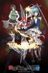 Shinmai Maou no Testament serial