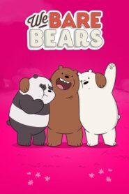 We Bare Bears serial