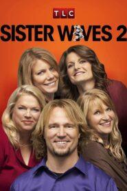 Sister Wives serial