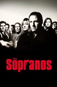 Rodzina Soprano serial