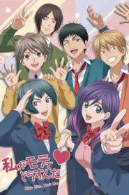 Watashi ga Motete Dousunda serial