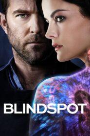 Blindspot: Mapa zbrodni serial