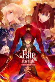 Fate/stay night [Unlimited Blade Works] serial