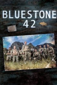 Bluestone 42 serial