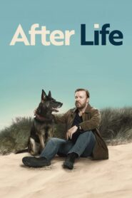 After Life serial
