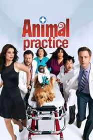 Animal Practice serial