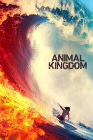 Królestwo zwierząt serial