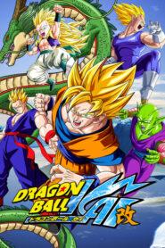 Dragon Ball Kai serial
